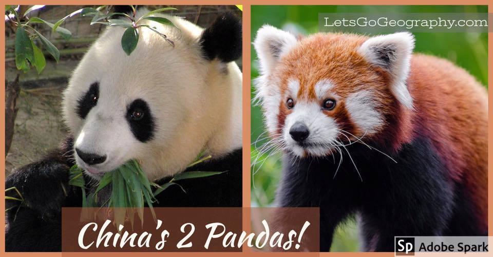 China's 2 Pandas | LetsGoGeography